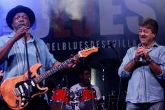 Lurrie Bell, Sevilla Blues Festival 2014